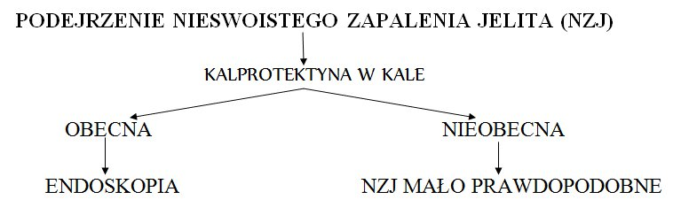 kalprotektyna1